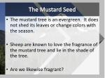 the mustard seed3