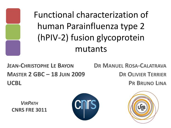 Functional characterization of human parainfluenza type 2 hpiv 2 fusion glycoprotein mutants