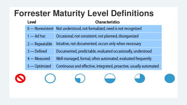 Forrester Maturity Level Definitions