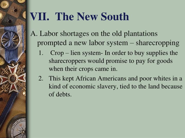 VII.  The New South