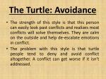 the turtle avoidance