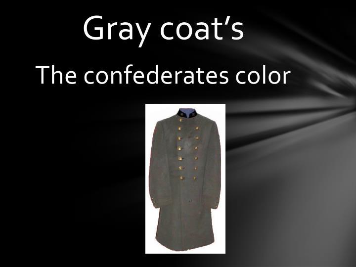 Gray coat's