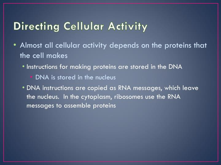 Directing Cellular Activity