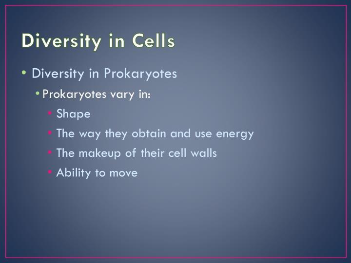 Diversity in Cells