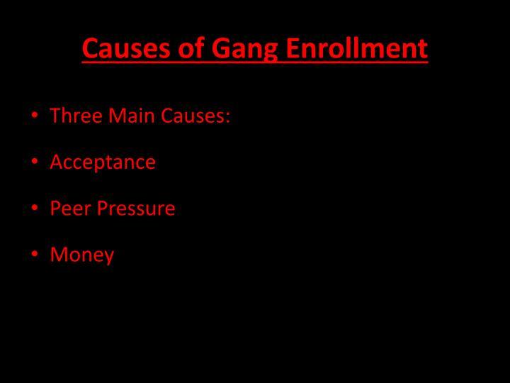 Causes of Gang Enrollment