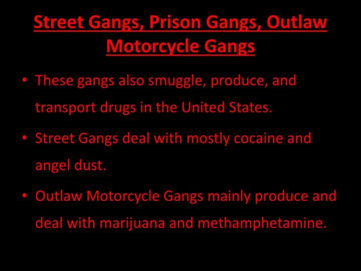 Street Gangs, Prison Gangs, Outlaw Motorcycle Gangs