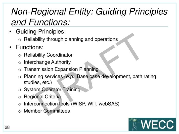 Non-Regional Entity: Guiding Principles  and Functions: