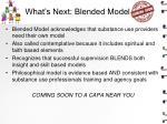 what s next blended model