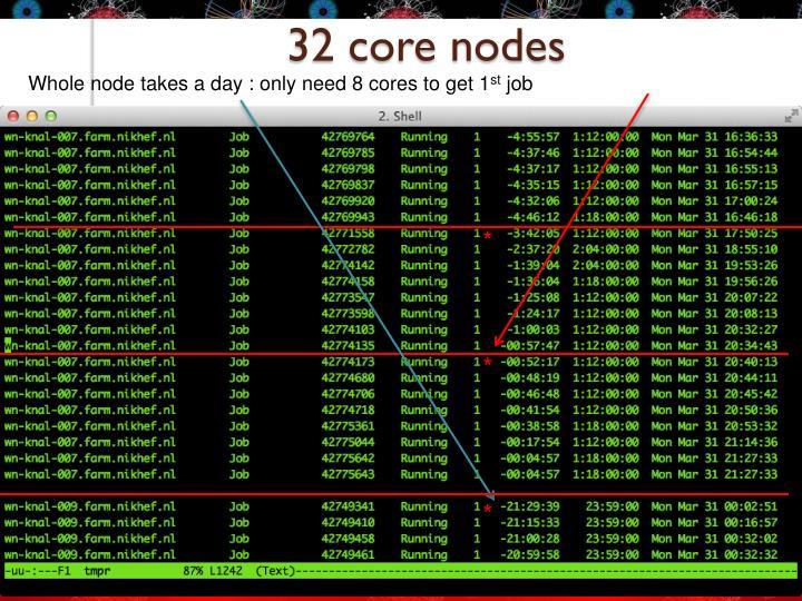 32 core nodes