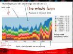 the whol e farm