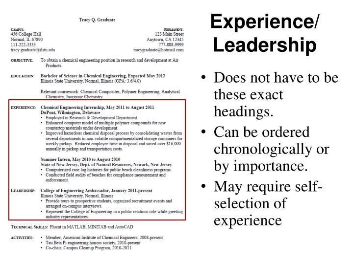 Experience/ Leadership