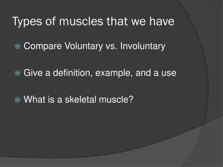 Types of muscles that we have