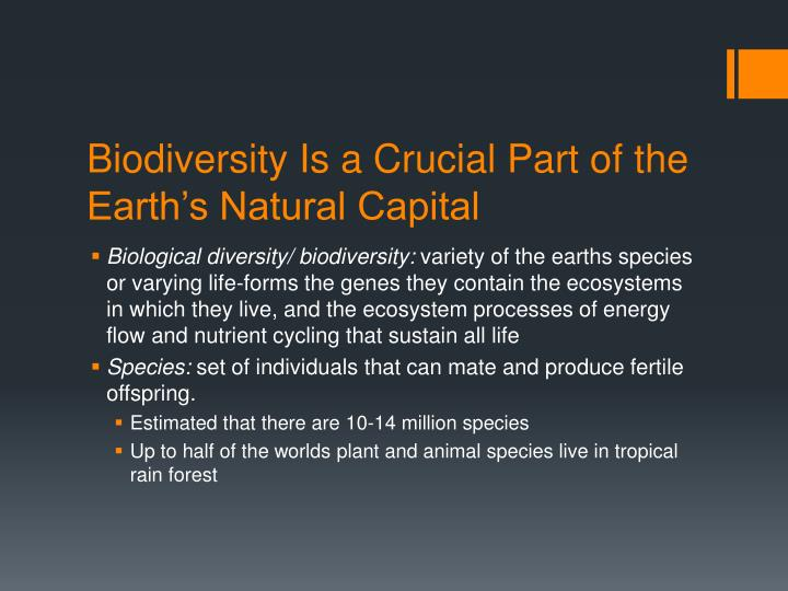Biodiversity Is a Crucial Part of the Earth's Natural Capital