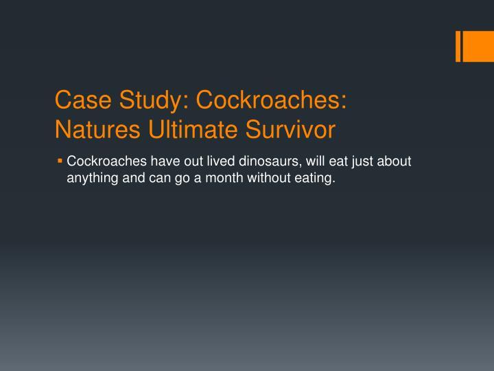 Case Study: Cockroaches: Natures Ultimate Survivor