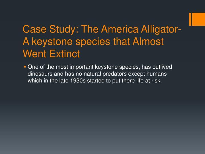 Case Study: The America Alligator-A keystone species that Almost Went Extinct