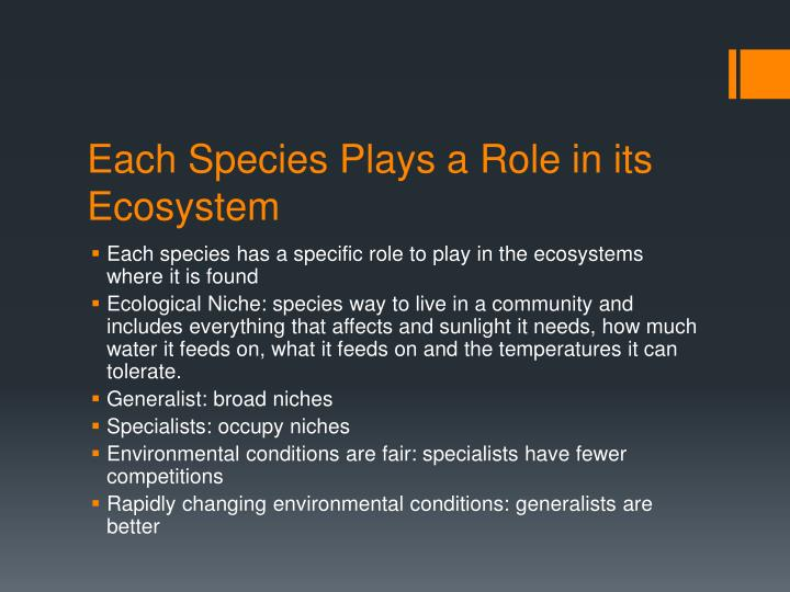 Each Species Plays a Role in its Ecosystem