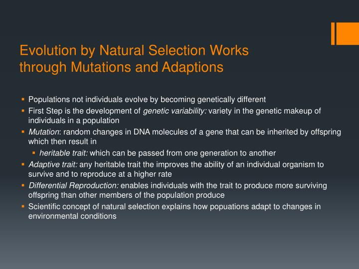Evolution by Natural Selection Works through Mutations and Adaptions