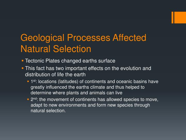 Geological Processes Affected Natural Selection