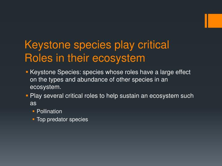 Keystone species play critical Roles in their ecosystem