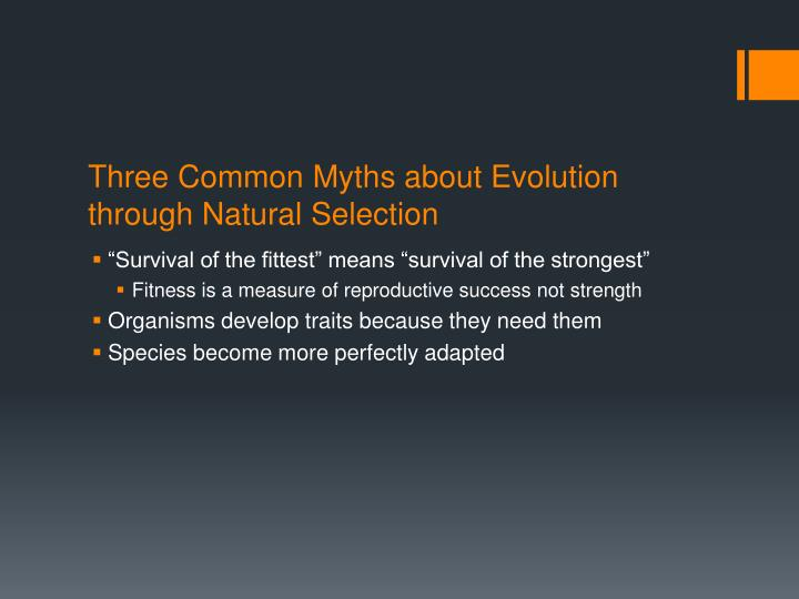 Three Common Myths about Evolution through Natural Selection