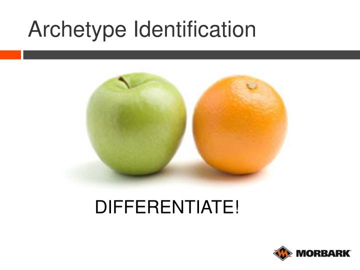 Archetype Identification