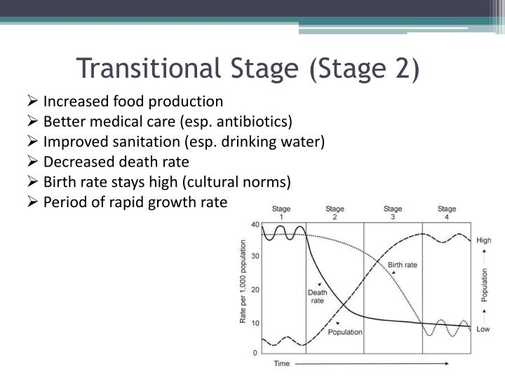 Transitional Stage (Stage 2)