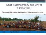 what is demography and why is it important