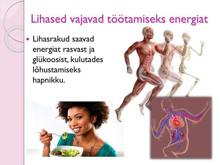 Lihased vajavad töötamiseks energiat