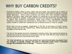 why buy carbon credits
