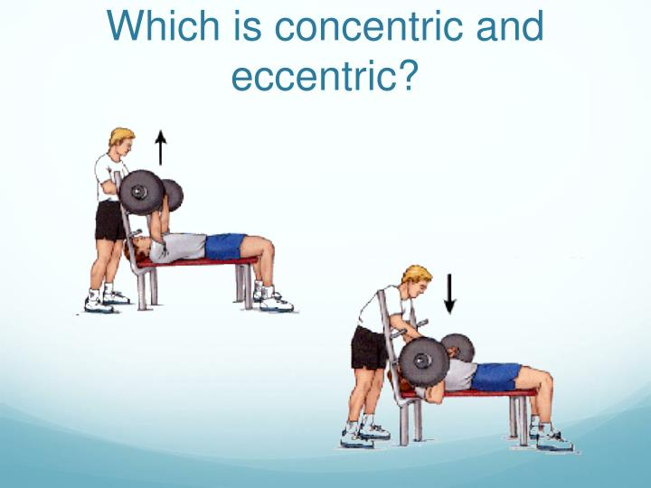 Which is concentric and eccentric?
