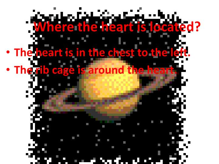 Where the heart is located