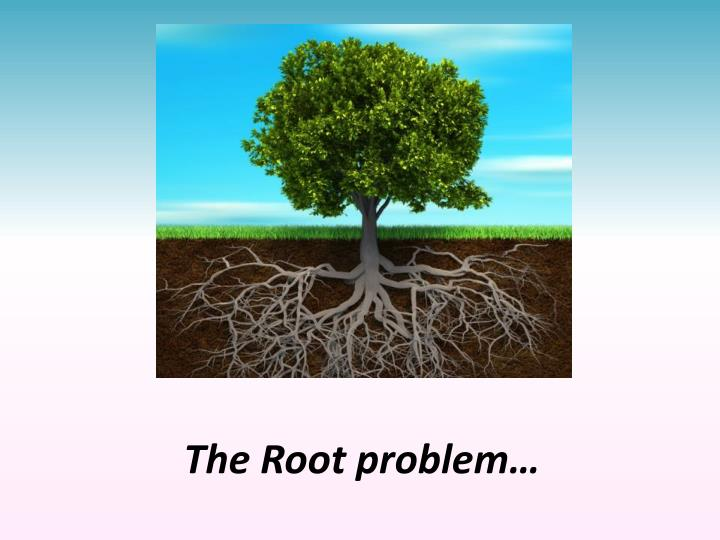 The Root problem…