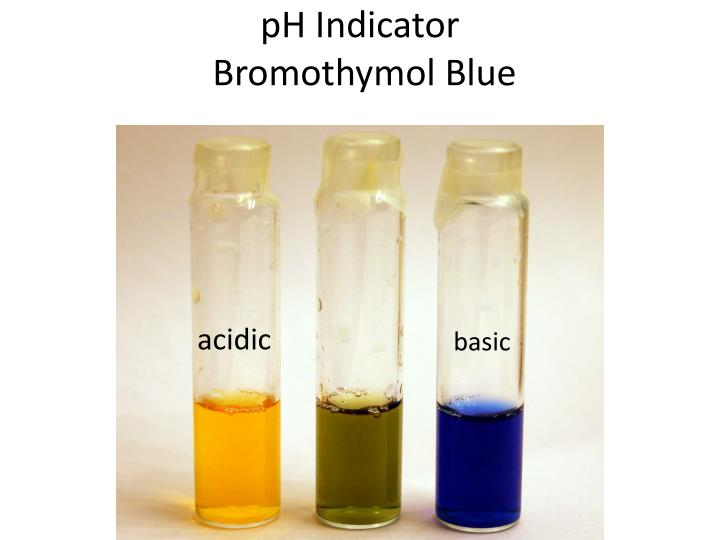 Ph indicator bromothymol blue