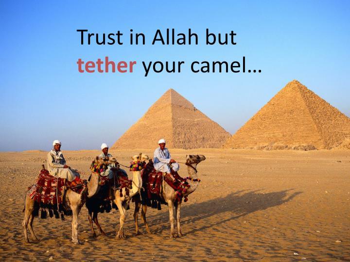 Trust in Allah but