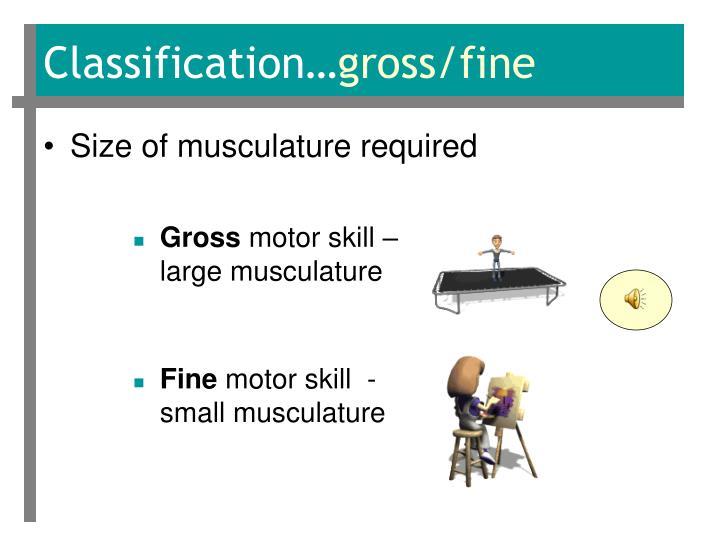 Classification…