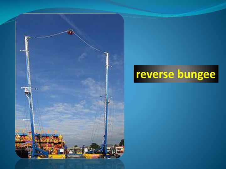 reverse bungee