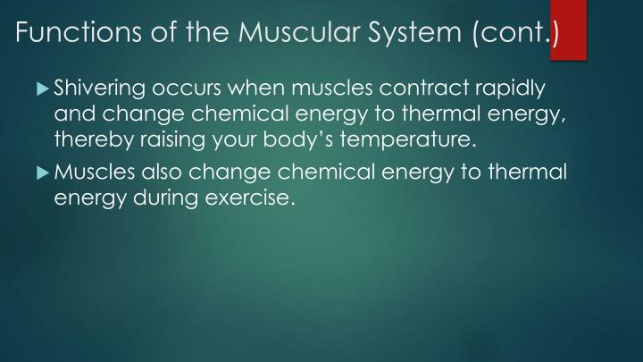 Functions of the Muscular System (cont.)