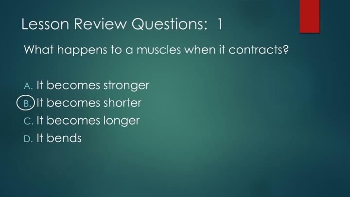 Lesson Review Questions:  1