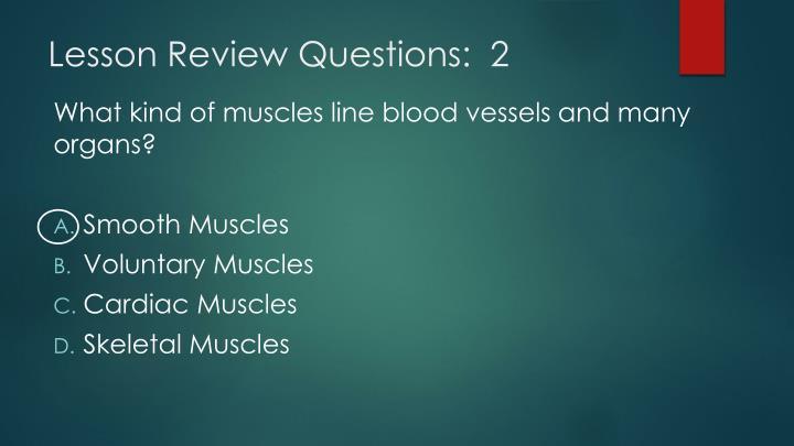 Lesson Review Questions:  2