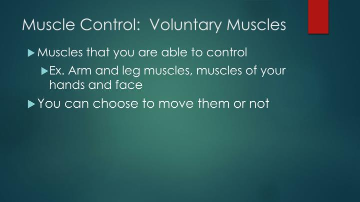 Muscle Control:  Voluntary Muscles