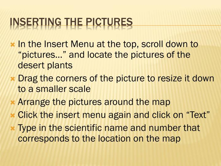 """In the Insert Menu at the top, scroll down to """"pictures…"""" and locate the pictures of the desert plants"""