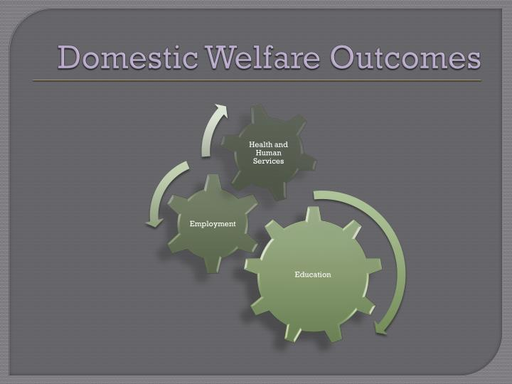 Domestic Welfare Outcomes