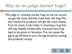 why do we judge market hogs