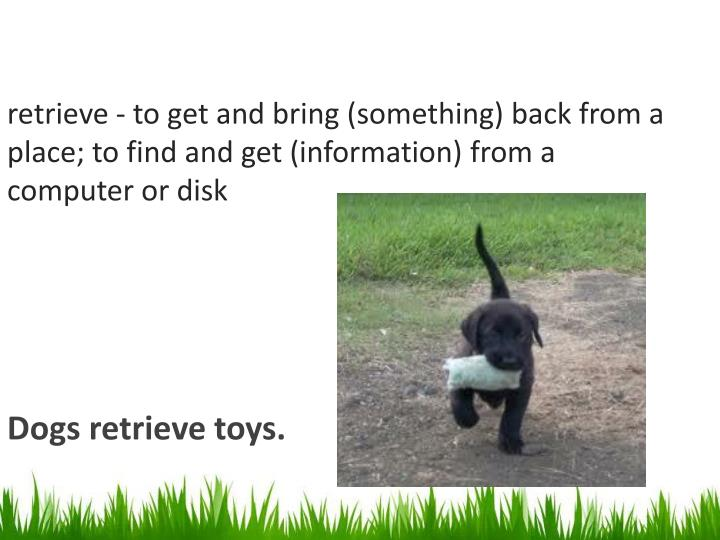 retrieve - to get and bring (something) back from a place; to find and get (information) from a computer or disk