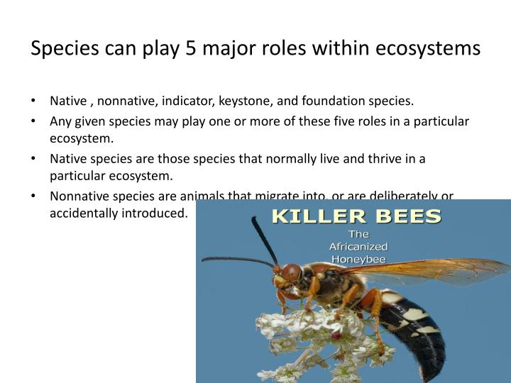 Species can play 5 major roles within ecosystems