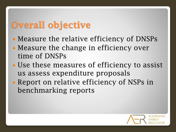 Measure the relative efficiency of DNSPs