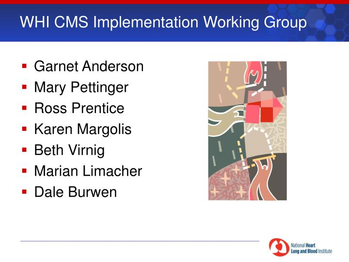 WHI CMS Implementation Working Group