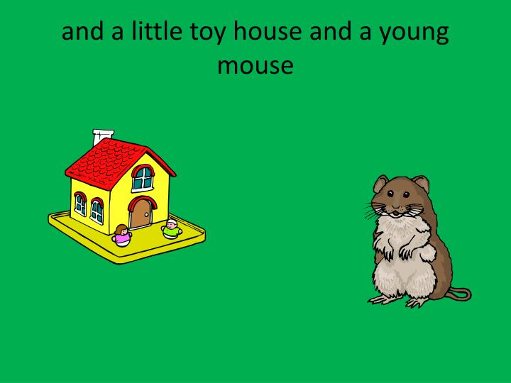 and a little toy house and a young mouse