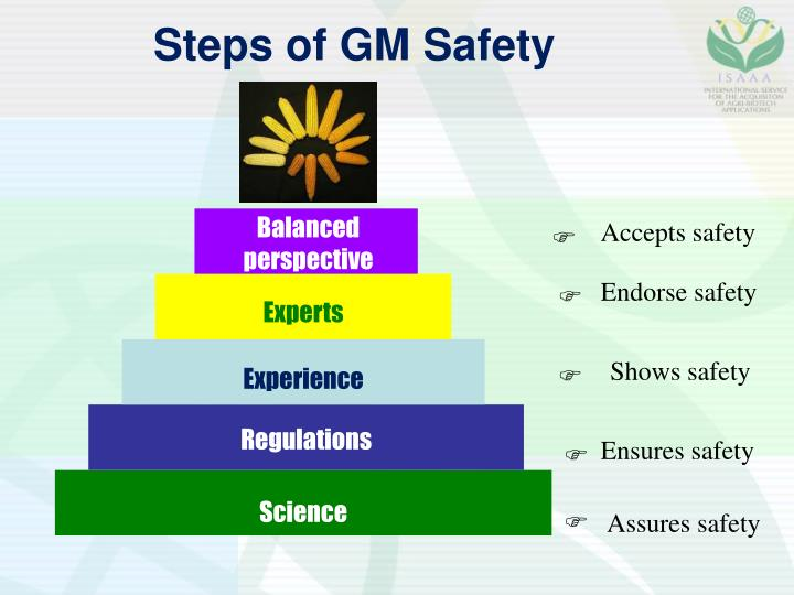 Steps of GM Safety