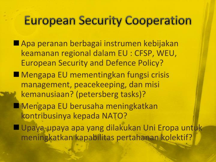 European Security Cooperation